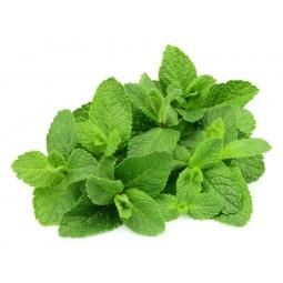 Mint Herbs 100g